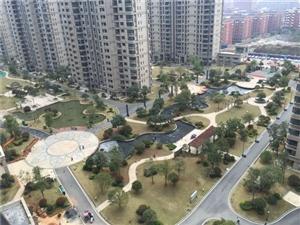高档小区碧桂园一个温馨的家精装三房江景人车分流锦绣花园