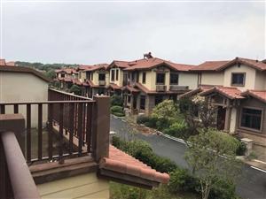 光谷旁梧桐湖新区碧桂园假日半岛双拼双层美墅前后花园两个露台
