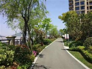 绿城蔚蓝公寓云澜庭五期新房首开精装海景房