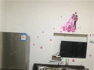 大洲广场汉安首座电梯房套房精装修家具家电齐全房子漂亮