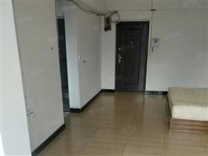 开发区公园一号单身公寓月租900