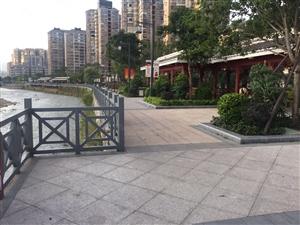 莲东中心,水木莲花,朝南河边大两房,带露台,单价仅1万一平方