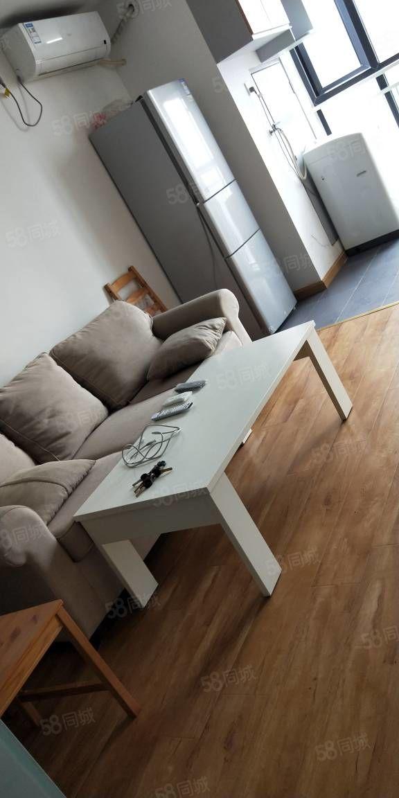 龙年国际公寓精装低价出租大衣帽间