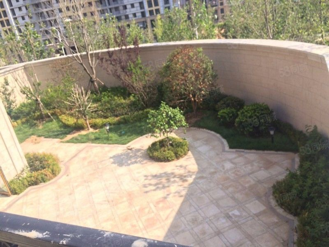 绿城玫瑰园临近小区门口位置好户型通透光线亮随时看房