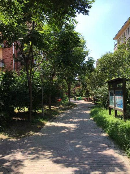 南湖雅苑稀缺一楼小户型,自由发挥想象,给您一个温馨的家!