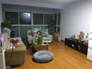 郑大三附院附近多层115平低楼层南北通透三房学府新家园
