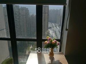 泰禾红树林(沈海高速)1室1厅1卫