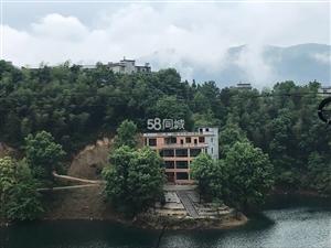 王英仙岛湖老新屋小区66号9室9厅9卫