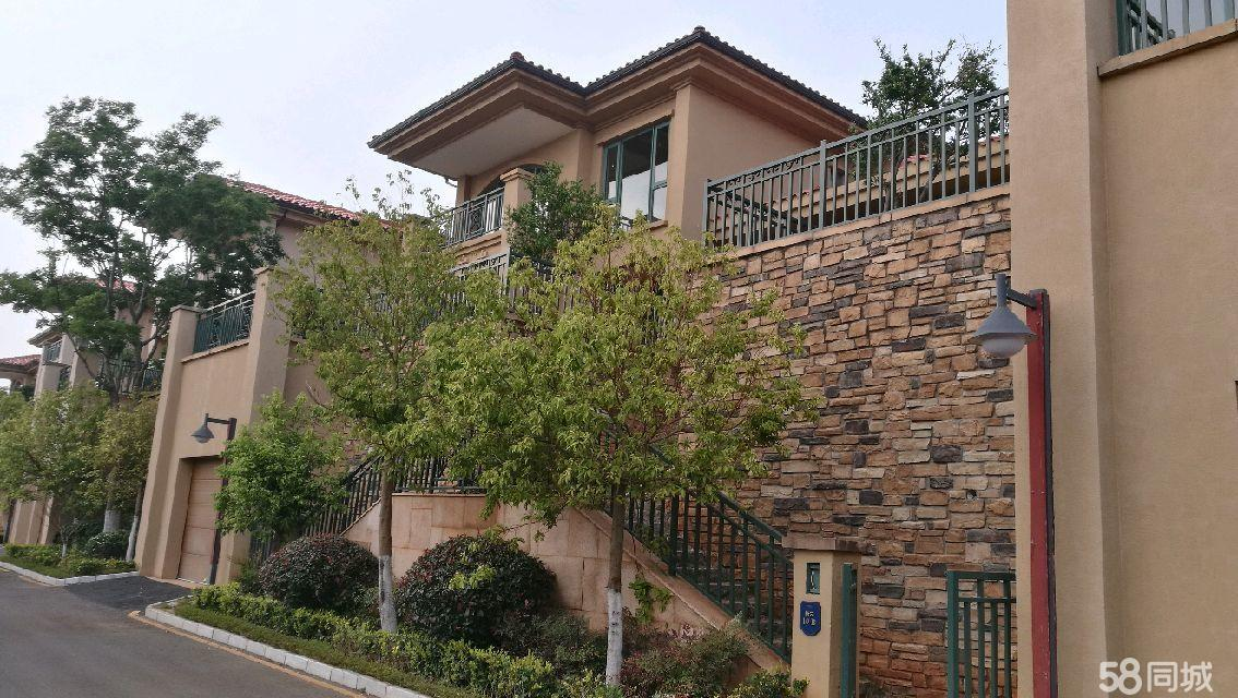 太阳山独栋别墅4室2厅4卫273.91平米
