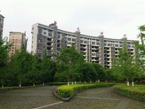 新天时代3室2厅2卫140平米毛坯电梯房8楼
