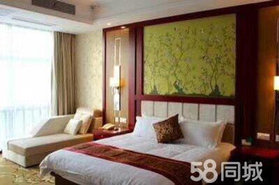 泗安假日大酒店1室1厅1卫