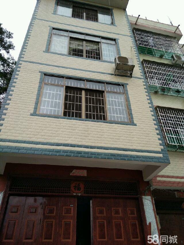 巴马水电局城东后面自建房6室1厅7卫