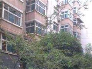 淅川县第一初级中学家属院3室1厅1卫出售