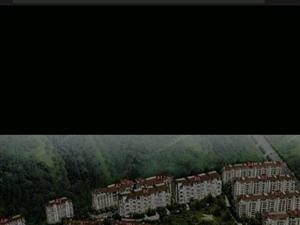 威海环翠区合庆东紫园3室2厅2卫