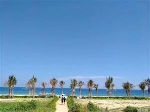 网红海陵岛南海湾不限购无敌一线海景房