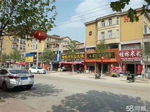 丰庄未来城纯一层商铺