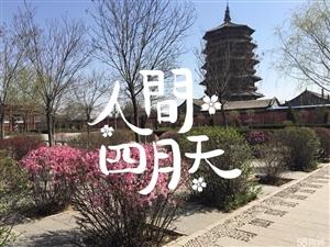 广新小区阳面车库