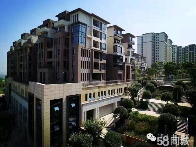首付9万起买婚房,学期房,就在纳溪未来城,88平方,超大2房