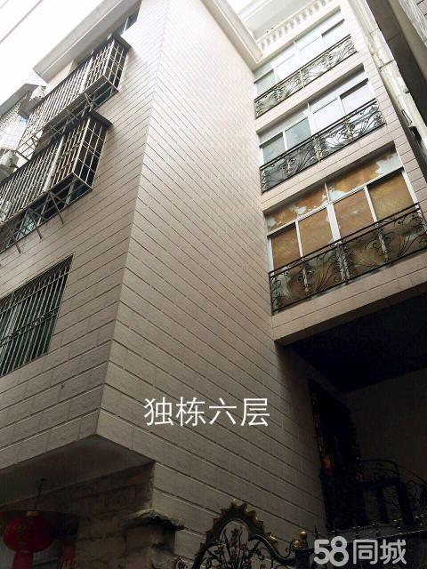 一整栋5层半,后岗开发区A区内街,每层80平