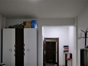 划片附小十中小区电梯房可落户目前出租1000元