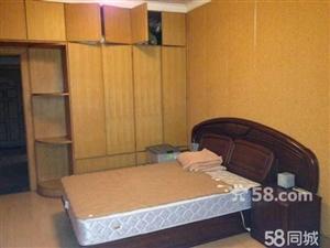 罗廊巷小区省中医旁2室1厅65平米简单装修押一付一