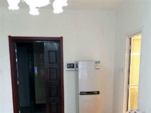 CBD海景豪苑1室1厅51平米精装修押一付三