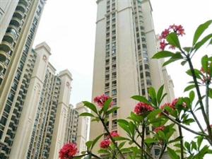 新河和盛花园南北通电梯中楼层157平3房2仅此一套可按揭