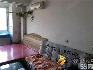 整租鑫苑都市公寓.精装标间.,随时看房,室内干净