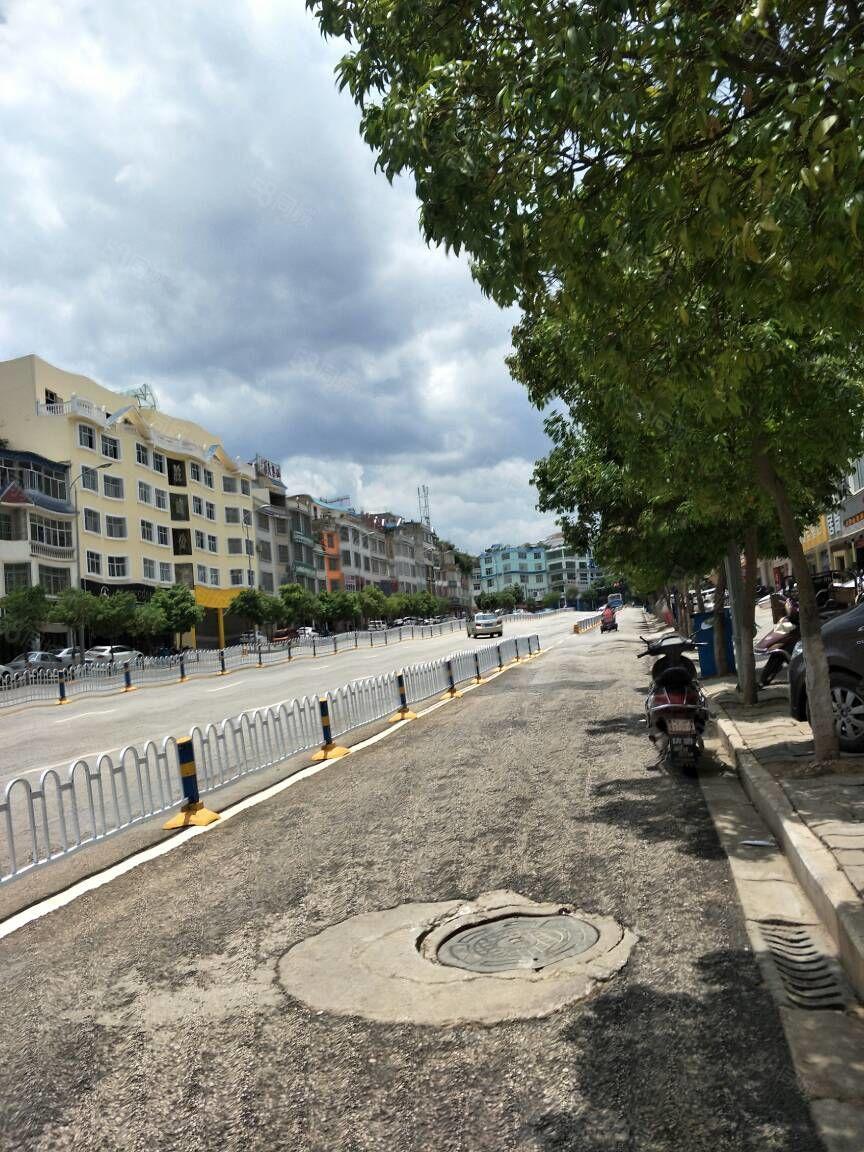 七花南路自建房带商铺出售现年租金近10万接手即可经营