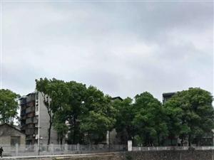 0纸厂宿舍靠近五中近63平方二室两厅二楼,简装带电10.8万