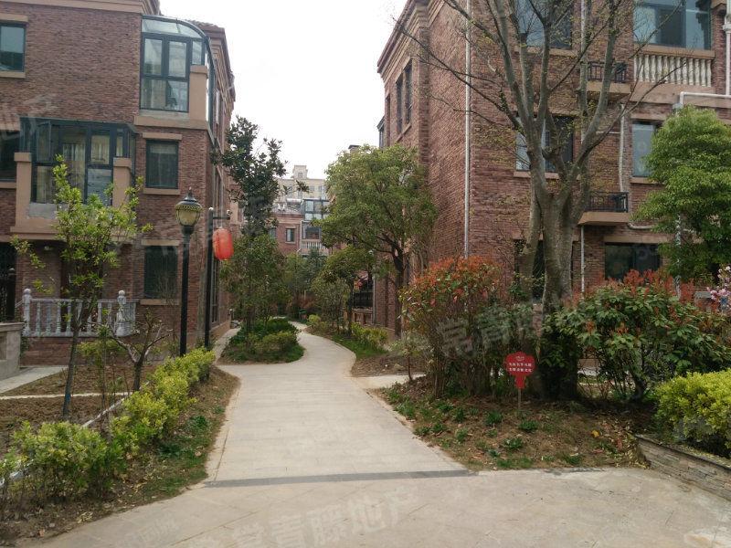 天香幸福墅房龄新,户型方正房间多,院子大,采光好,价格便宜
