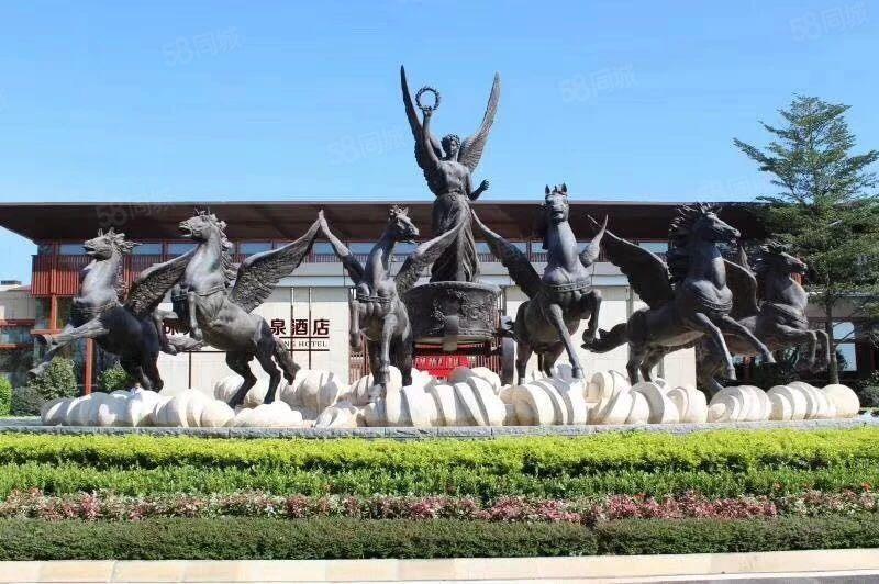丰顺珠光新城双拼别墅5房3国际温泉城生态旅游度假区