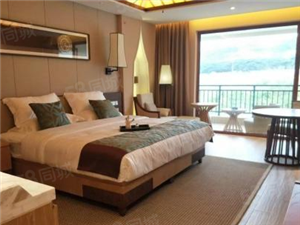 丽江假日酒店投资公寓44平收益2800旅游业为支柱产业
