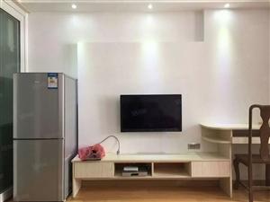 世纪豪庭精装修一室一厅出租,家电齐全,随时看房