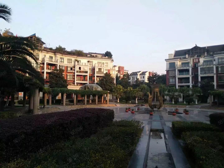 都市美丽洲环境优美拎包入住