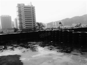 华府豪庭精装修单身公寓超牛掰大露台