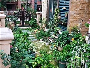恒大花园洋房!送前后院子!你的梦幻花园!