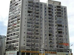 单身公寓30.45平方售价23.8万