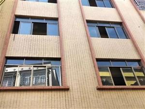 始兴路尾私宅三面见光45方四层半砂纸七米巷有后门可做铺仔