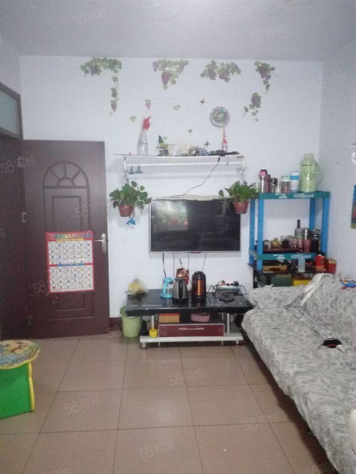 东大街紫荆山附近标准一室一厅户型方正朝阳采光好首付仅需15w