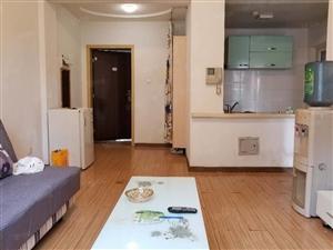 莱茵河畔雪松花园三楼精装一室超低价!