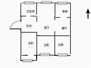 新珠花苑,套三精装婚房,浇筑带草房,急用钱99万急售!