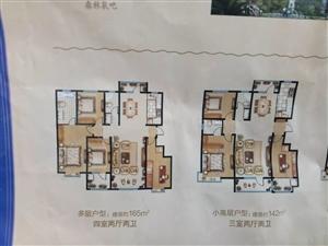 3楼楼王位置带着定金来看房多层电梯洋房团购价