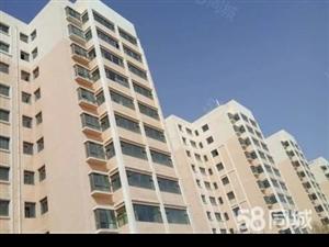 急售皇台二区拆迁安置房11楼85平2居室阳面房现房