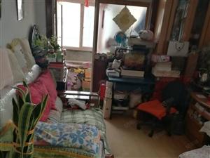 哈尔滨路套二厅精装双气地板地家具家电全紧邻53中