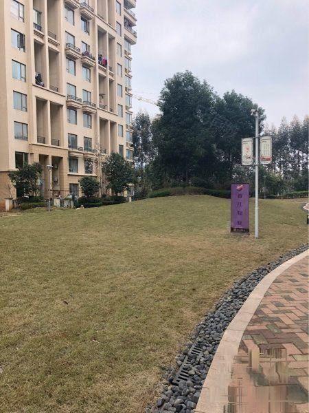 新房(锦绣香江)三期洋房,一楼44平大送花园,可享田园生活