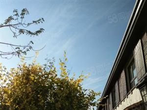 南山别墅从带院现房一手房团购限事业单位参与