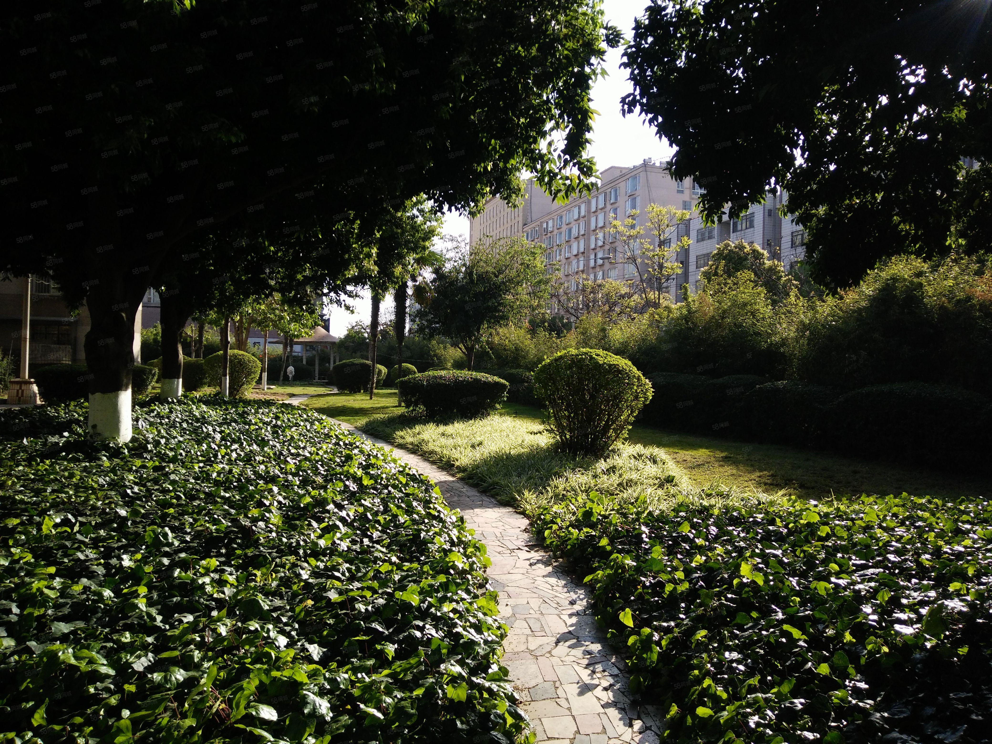 诸葛小区烟厂3楼1100/月澳门金沙平台