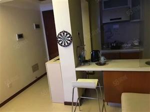 港惠新天地沃尔玛西区精致一房高档白领公寓精品装修