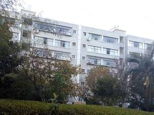 只需28万即获电力小区中央丽城西城一品精装大3房